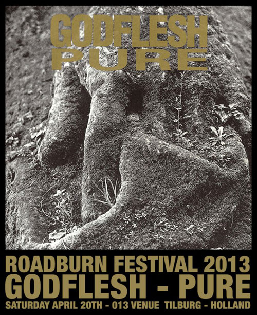 Roadburn 2013 - Godflesh 'Pure'