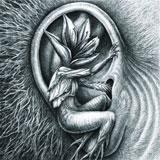 Botanist 'III - Doom In Bloom/Allies' 2xCD 2012