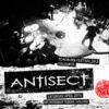 Roadburn 2013 - Antisect