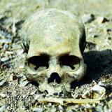 Bone Man 'II'