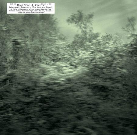 Mamiffer & Circle 'Enharmonic Intervals (for Paschen Organ)' Artwork