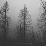 ROTS 'The Night The Trees Burnt'