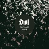 Owl 'The Last Walk'