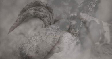 Torpor / Sonance – Split
