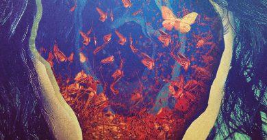 -(16)- 'Lifespan Of A Moth' 2016
