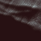 JK Flesh 'Posthuman' CD/DD 2012