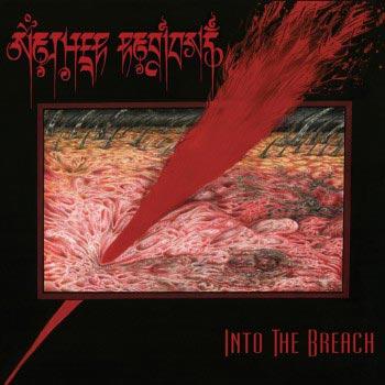 Nether Regions 'Into The Breach' Artwork