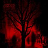 Drug Honkey 'Ghost In The Fire' CD/DL 2012