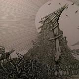 Transatlantic Rat's Atom / BirdEye - Split