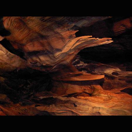 Gorse 'Twisting Nature' Artwork