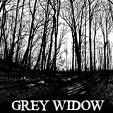 Grey Widow 'I'
