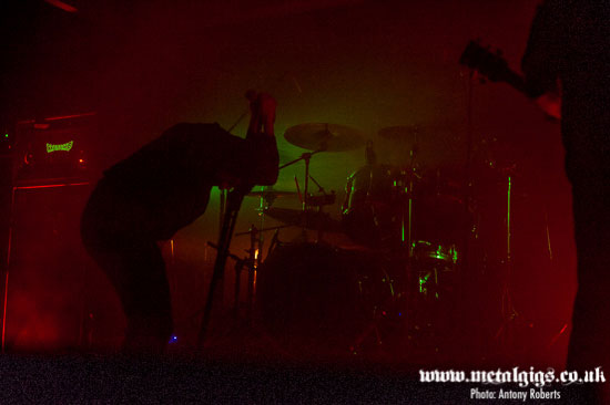 Temples 2014 - Dragged Into Sunlight - Photo by Antony Roberts