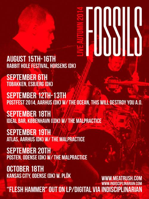 Fossils - Autumn Tour 2014