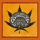 Brant Bjork And The Low Desert Punk Band 'Black Power Flower'