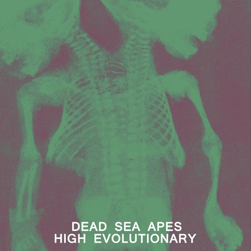 Dead Sea Apes 'High Evolutionary' Artwork