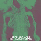 Dead Sea Apes 'High Evolutionary'