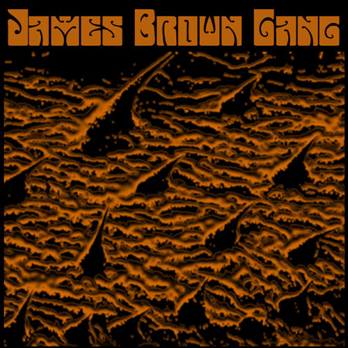 James Brown Gang - S/T Artwork