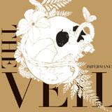The Veil 'Impermanence'