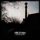 Voltion 'Wreck Amoung Ruin'