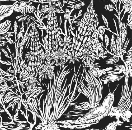 Eternal Tapestry 'Wild Strawberries' album art