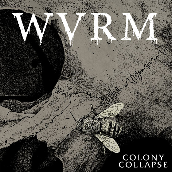 WVRM 'Colony Collapse'