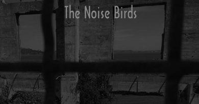 The Noise Birds 'The Dark Sea Hides A Bright Light'