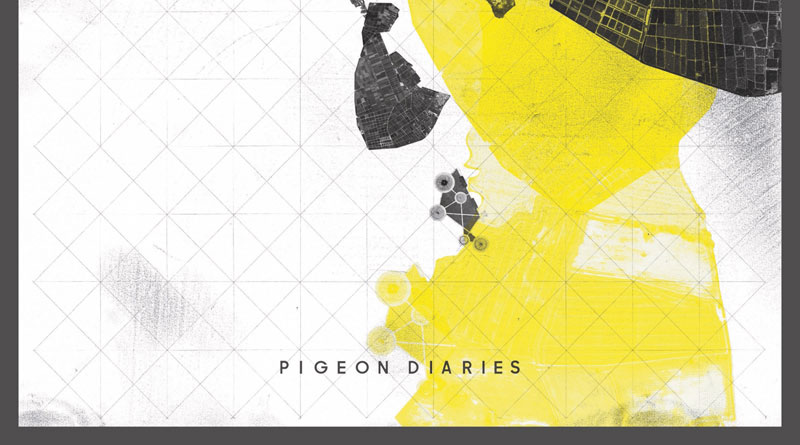 Enablers 'Pigeon Diaries'