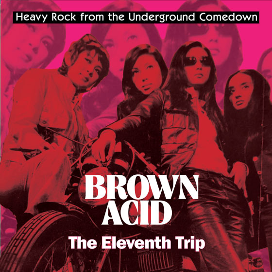 Various Artists 'Brown Acid: The Eleventh Trip'
