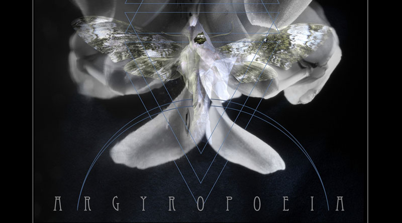 Sataray / Zania Morgan 'Argyropoeia'