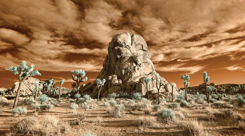 Earthless 'Live In The Mojave Desert – Volume 1'
