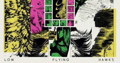 Low Flying Hawks 'Fuyu'